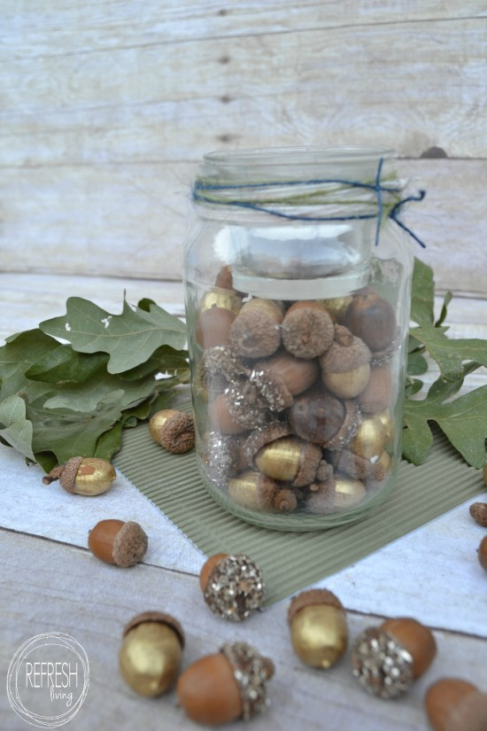 acorn glass jars