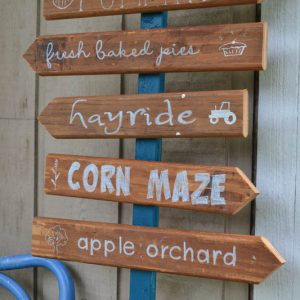 After learning the trick to write perfect letters on signs, this DIY fall wood sign would be so easy to make!