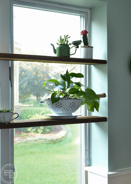 Install floating wood shelves in a window nook in a few easy steps. This indoor garden is planted in vintage enamelware containers.